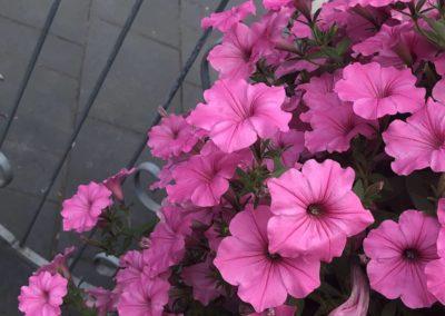 creation-fleur